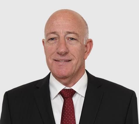 Йехуда Сарид, генеральный директор, группа Лудан